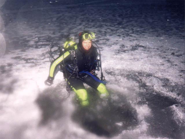 winter dive